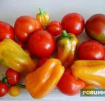 Грунт для помидоров на подоконнике